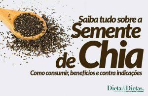 Semente de Chia, Como Consumir, Como Usar, Qual a Quantidade e com que Alimentos