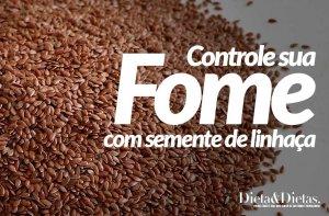 Mantenha sua Fome Sob Controle coma Semente de Linhaça