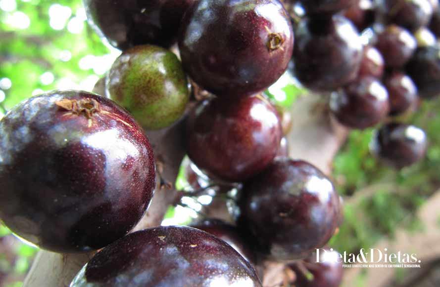 jabuticaba - Alimentos Ricos em Nutrientes e Vitaminas