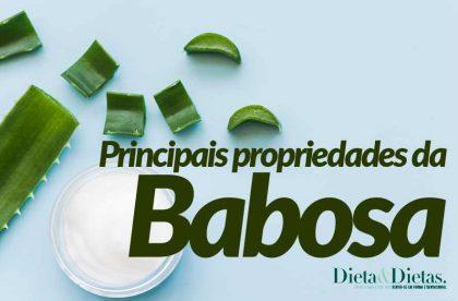 Principais Propriedades da Babosa