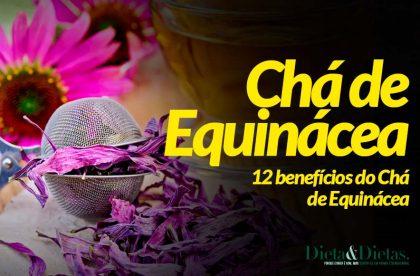 12 Benefícios do Chá de Equinácea