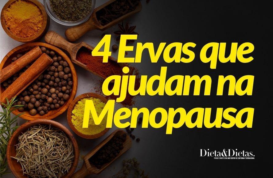 5 Ervas que ajudam o corpo durante as exigências e transformações da menopausa ajudam Menopausa